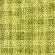ART PAPER Farbe: limettengrün (VN0111)