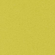 ROMA Farbe: lindgrün (VP0906)