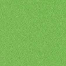 ROMA Farbe: leicht grün (VP0907)